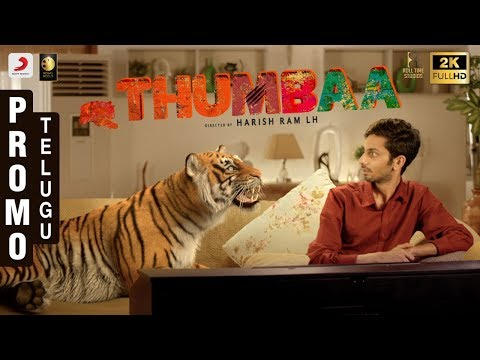 Thumbaa - Title Reveal | Promotional Video Telugu | Anirudh Ravichander | Harish Ram LH