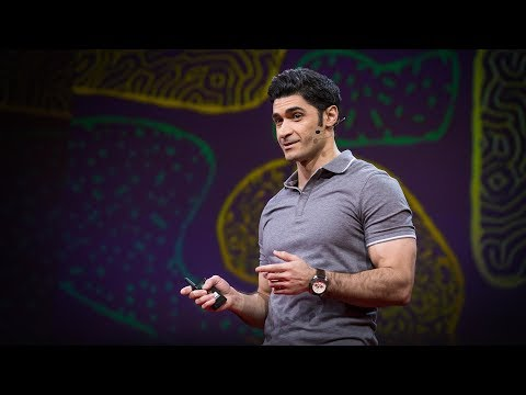 Video image: What happens in your brain when you pay attention? - Mehdi Ordikhani-Seyedlar