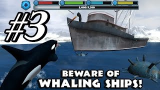 Orca Simulator By Gluten Free Games - Android & iOS - Gameplay Part 3