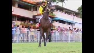 Rai Joorawaon Simply The Best Jockey