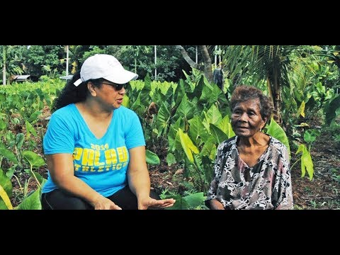 CULTURAL CURRENTS/ROOTS: Gardening Agana Spring