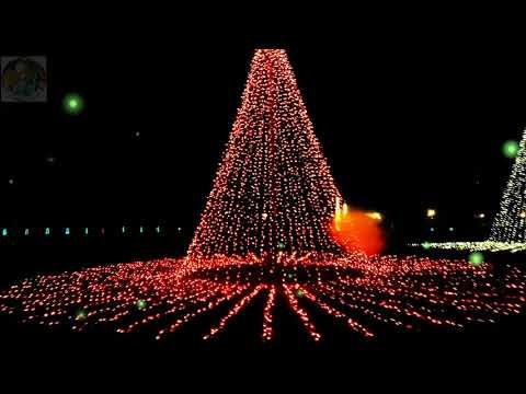 The dancing lights of Christmas / Christmas lights music show - The Dancing Lights Of Christmas / Christmas Lights Music Show - YouTube