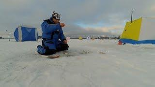 Зимняя рыбалка на Озерне. Утренняя ловля плотвы со льда. Уловистая мормышка.
