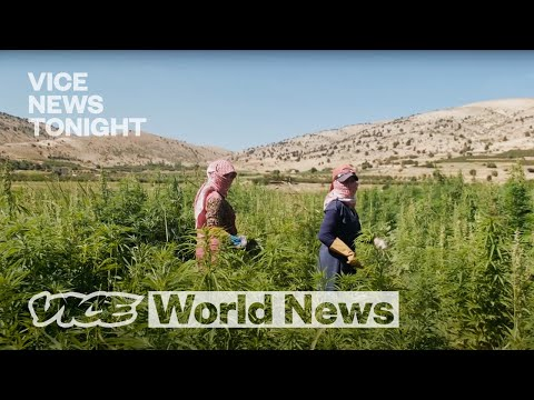 Inside Lebanon's Illegal Weed Business