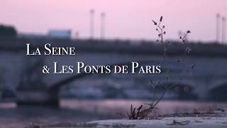 Paris Bridges & Paris river Seine