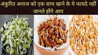 सुबह नाश्ते में अंकुरित अनाज (गेहूं, मूंग, चना) खाने के चमत्कारिक फायदे। बुढ़ापे को दूर रखने वाली चीज़