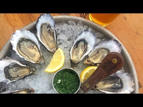 California Dream Eater Visits Hog Island Oyster Company On The Tomales Bay