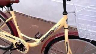 Обзор велосипеда Дорожник Люкс