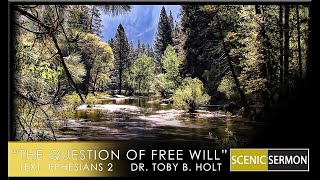The Question Of Free Will