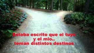 Seguiré mi camino - Julio Iglesias