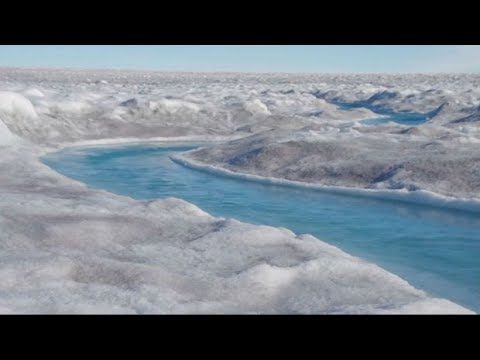 Greenland ice melt and the connection to rise in algae growth