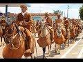 39ª Festa de Vaqueiros de Nova Redenção é destaque na TVE