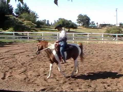 Horse bucking with Mike Hughes