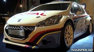 Peugeot 208 Type R5 2012 Videos