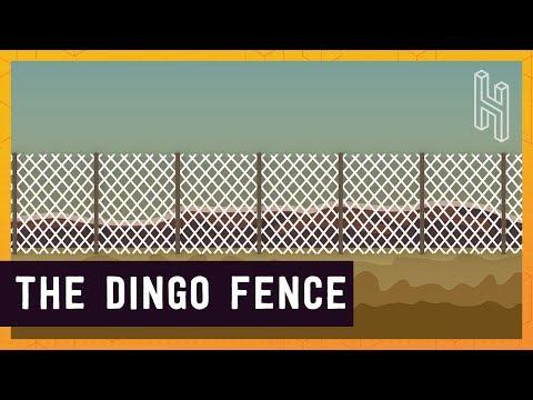 Australia's 3,488 Mile Long Fence