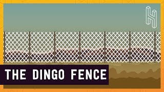 Australia's 3,488 Mile Long Fence(, 2018-01-04T15:31:02.000Z)