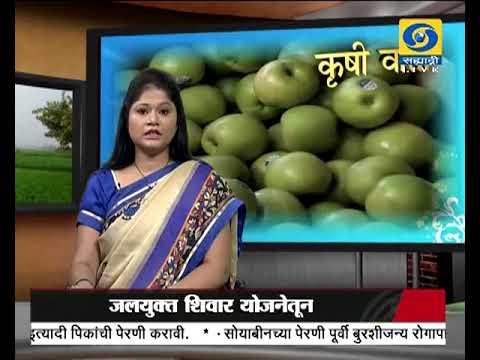 Krishivarta Bajarbhav - 28 June 2018 - कृषीवार्ता बाजारभाव