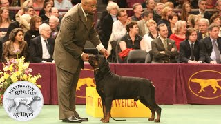 From the WKC Archives: WKC Best in Show 2006