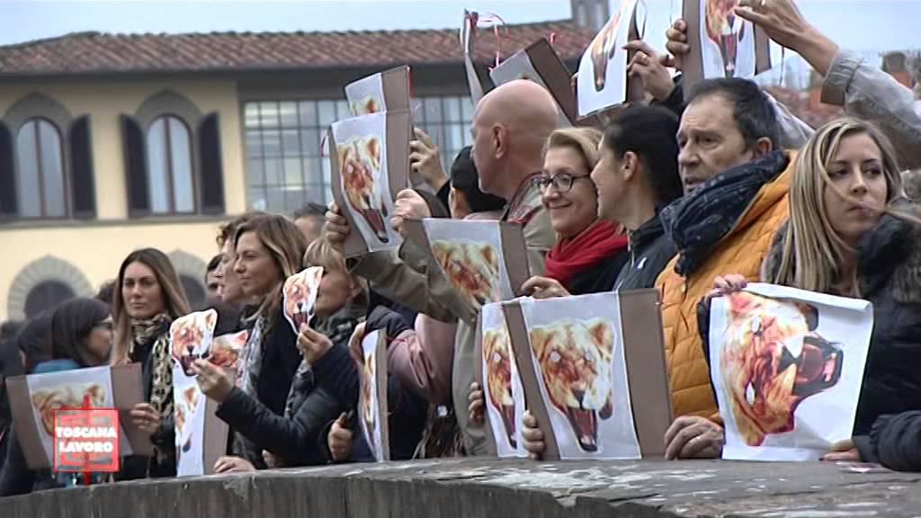 half off cc645 a220c Maison Roberto Cavalli: Dall'Osmannoro in Tornabuoni. Secondo sciopero.