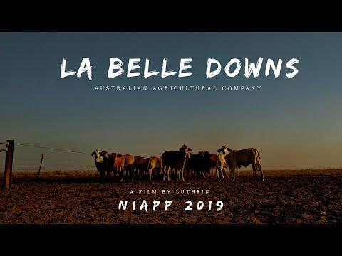 STATION LIFE : AUSTRALIA | La Belle Downs Station | NIAPP 2019