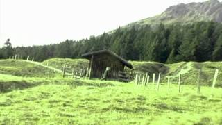 The Prince of Mirabell feat. Carmen - Home grown Edelweiss(Video to The Prince of Mirabell featuring Carmen - Home Grown Edelweiss produced by Justin Unterwurzacher; Lyrics: they called him, gangsta montagna ..., 2012-09-08T02:54:07.000Z)