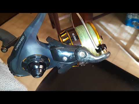 Daiwa BG 5000 Review/How Maintained (2)