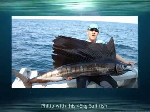 Sailfish Fishing at Kuala Rompin
