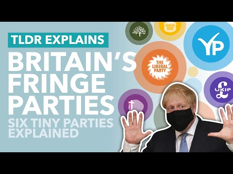 Britain's Weird, Small Political Parties Explained - TLDR News