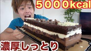 【絶対真似しないで】超濃厚なチョコケーキ2kg本気で食べ続けたら身体に異変が起きてヤバかった。。。