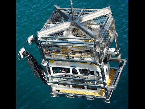 Horizon's Seaeye Cougar XT ROV Offshore UAE