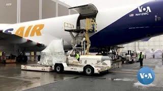 Trump Denies Halting Shipment of Protective Equipment Abroad