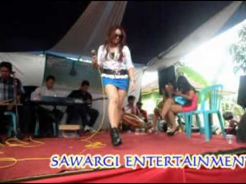 pongdut sawargi entertainment badai biru