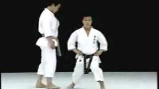 Kagawa Karate Zenkutsu Dachi