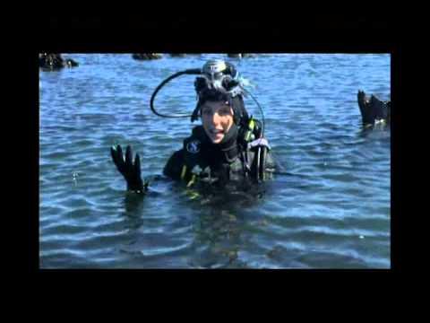 Shoreline Series 2 Episode 1