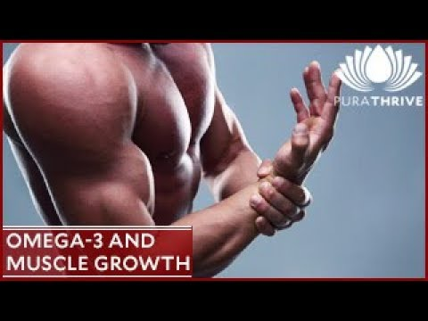 Omega-3's and Muscle Growth: PuraTHRIVE- Thomas DeLauer