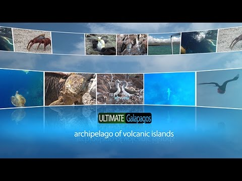 The Ultimate Galapagos 1080p H264 AAC rev5