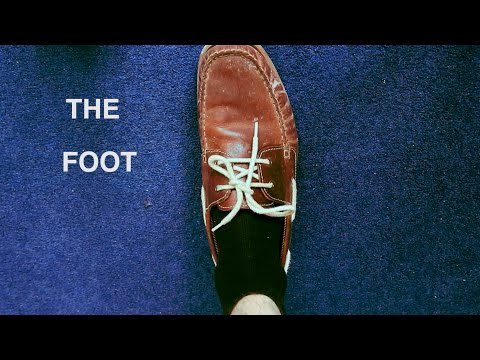 The Foot | MINISTRY OF EDUCATION