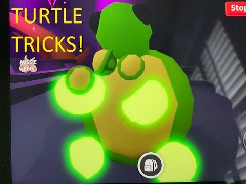 Neon Turtle Tricks In Roblox Adopt Me Youtube