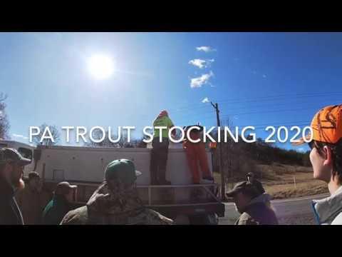 PA TROUT STOCKING 2020