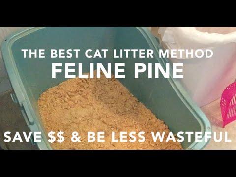 The Best Cat Litter Method - Feline Pine How To - Less Mess & Saves Money