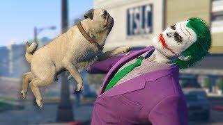 Playing As ANIMALS ONLINE! | GTA 5 THUG LIFE #272