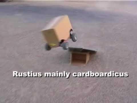 Traxxas Rustler - Brushless bashing - august 2006 - part 2