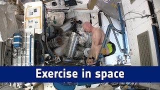 Horizons mission – exercise in space