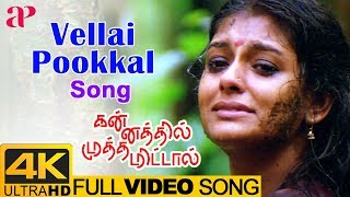 Vellai Pookal Full Song 4K | Kannathil Muthamittal 4K Songs | Nandita Das | AR Rahman