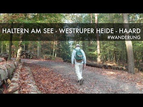 haltern-am-see---westruper-heide---haard-|-wanderung