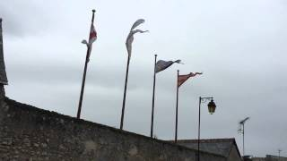 Slow mo flags