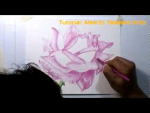 Dibujo De Una Rosa Con Lápices De Color Youtube