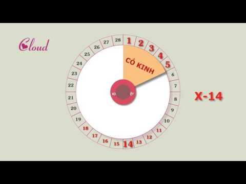 Hướng dẫn tránh thai bằng cách tính vòng kinh nguyệt