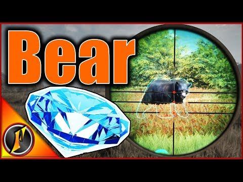 Diamond Black Bear!?! | theHunter Call of the Wild