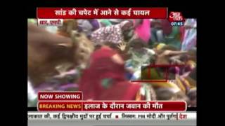 Bull Attacks People In A Public Meet In MP